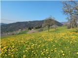 Stari vrh Pomlad