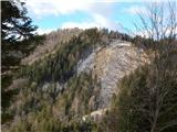 Tolsti vrh (pri Poljški planini)