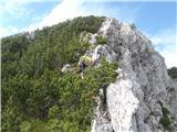 Matkova kopamalo pod vrhom