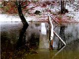 Debenji vrhpoplavljena brv na ribniku
