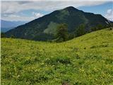 Weißenbach - Zgornja Belška planina / Obervellacheralm