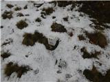 Podkoren - visoka_bavha