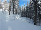 Razglednik - crni_vrh_nad_sorisko_planino