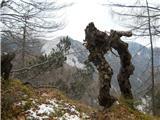 Breznjak / Monte Brizziautrinek