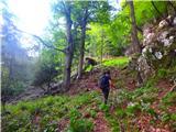 Kamnik ( 861m )lovska pot