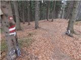 Radlje ob Dravi - kapunerhutte