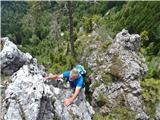Javorca(Golte)na enem od grebenov pod Alpskim vrtom