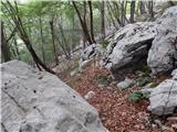 Kneške Ravne - Planina na Kalu