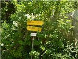 Podrožca / Rosenbach - golica