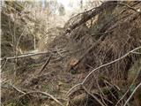 Dolina Radeljskega potoka (Razdevšek) - bricnik