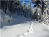 Bohinjsko sedlo - crni_vrh_nad_sorisko_planino