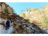 Kamniški vrhdel poti