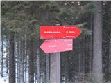 Dražgoše (Jelenšče) - planina_kalisnik