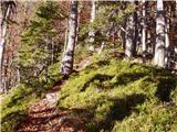 Bajdiše / Waidisch - Borovski vrh (Žehtar) / Sechter