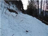 Prelaz Ljubelj (koča)Prvi plazovi so bili že kmalu nad parkiriščem