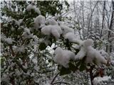 Prelaz Ljubelj (koča)Pomladno-zimski utrinek