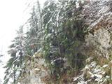 Prelaz Ljubelj (koča)Ob povratku je ponovno pričelo snežiti