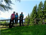 Vrtaško Slemenaša četica na planini