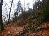 Kamnik ( 861m )po lovski stezi