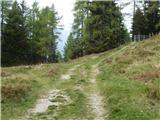 bergheimat_leppner_alm - Dachskofel