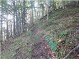 borovlje___ferlach - Borovski vrh (Žehtar) / Sechter