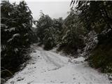 Vrh Ljubeljščice (Triangel)Zasnežena cesta