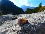 Jerebica /Cima del Lagoježek na sedlu :)