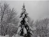 Prelaz Ljubelj (koča)Zimsko