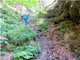 Vrtaško Slemepot kmalu nad zgornjim slapom(strmo,mokro-previdno)