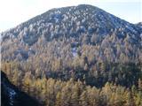 Ojstri vrh 1371mKriževnik