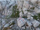 Gozdec - vrh_osojnic