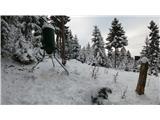 Javorca(Golte)lovska krmilnica blizu Linš