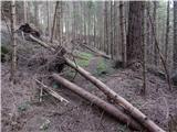 Podpeca (Helenski potok) - Peca (Kordeževa glava)