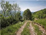Zatolmin - mrzli_vrh_nad_planino_pretovc
