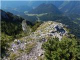 Podolševa (Rogar) - govca_olseva