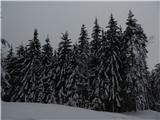 Prelaz Ljubelj (koča)Zjutraj še zimsko