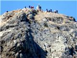 Vrbanove špicegužva na vrhu Triglava