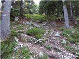 Iličev rovt / Illitsch Rauth - kamnica_komnica___ferlacher_spitze