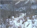 Alta via CAI Gemona (greben Lanež - Veliki Karman)sestop