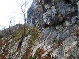 Kamnik ( 861m )na greben