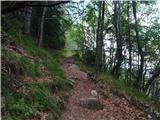 Dolina Avpe / Val Aupa - Sernio