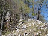 Ojstri vrh 1371mutrinek na grebenu