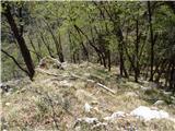 Ojstri vrh 1371m konec grebena