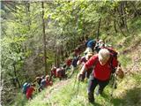 Ojstri vrh 1371mutrinek na poti