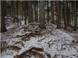 Dom v Dragi - tolsti_vrh_pri_poljski_planini