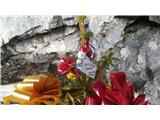Javorca(Golte)utrinek pri mojem bivaku pod Javorco