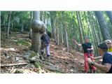 Tirske pečiv Erotičnem gozdu