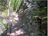 Vodiška planinacelo nekaj jeklenic se najde