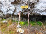 Olševaskala je dobro podpolcana, da se ne prevrže v dolino