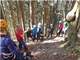 Tirske pečierotični gozd:)